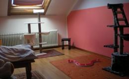 Traumzimmer Bild 2
